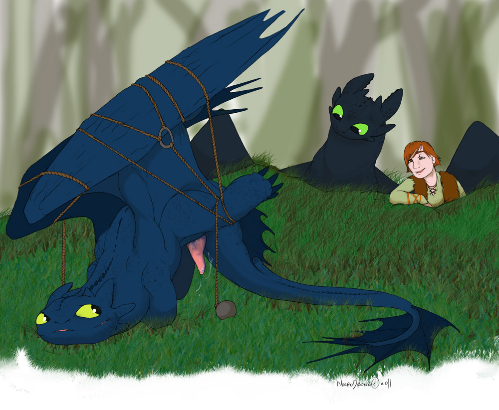 your train to fanfiction dragon how hiccup abused Fairy tail is freed gay