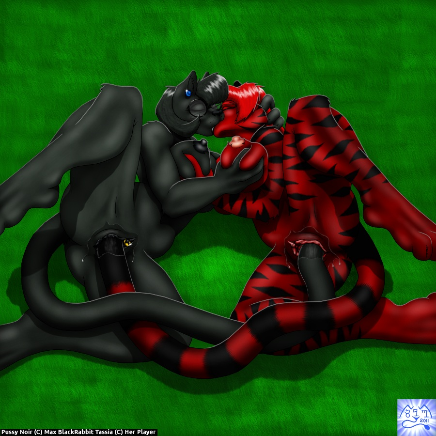 doki_doki_literature_club Digimon cyber sleuth female protagonist